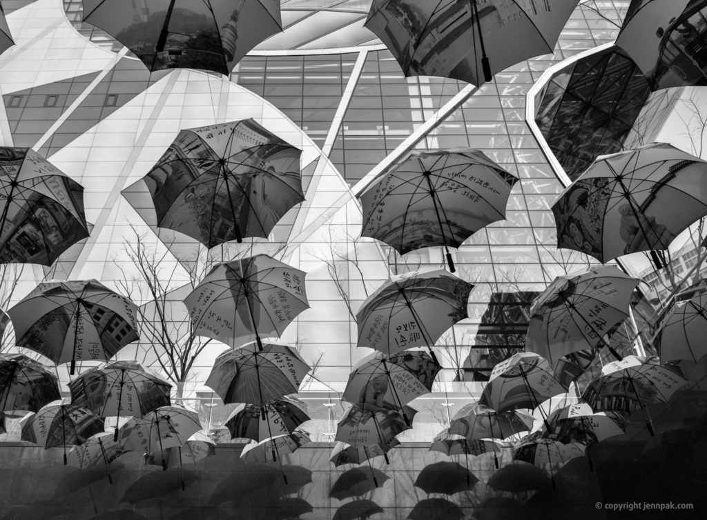 Wishing Umbrellas Photo