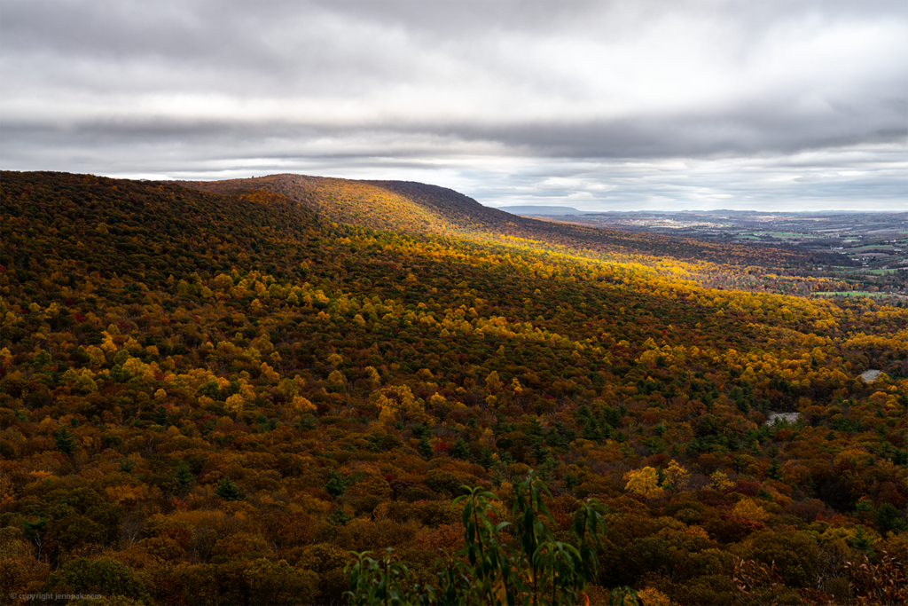 Hawk Mountain Overlook photo