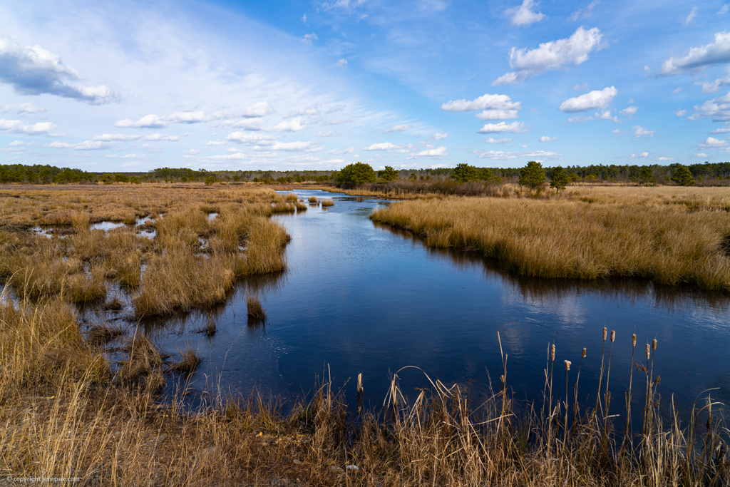 Marshlands photo
